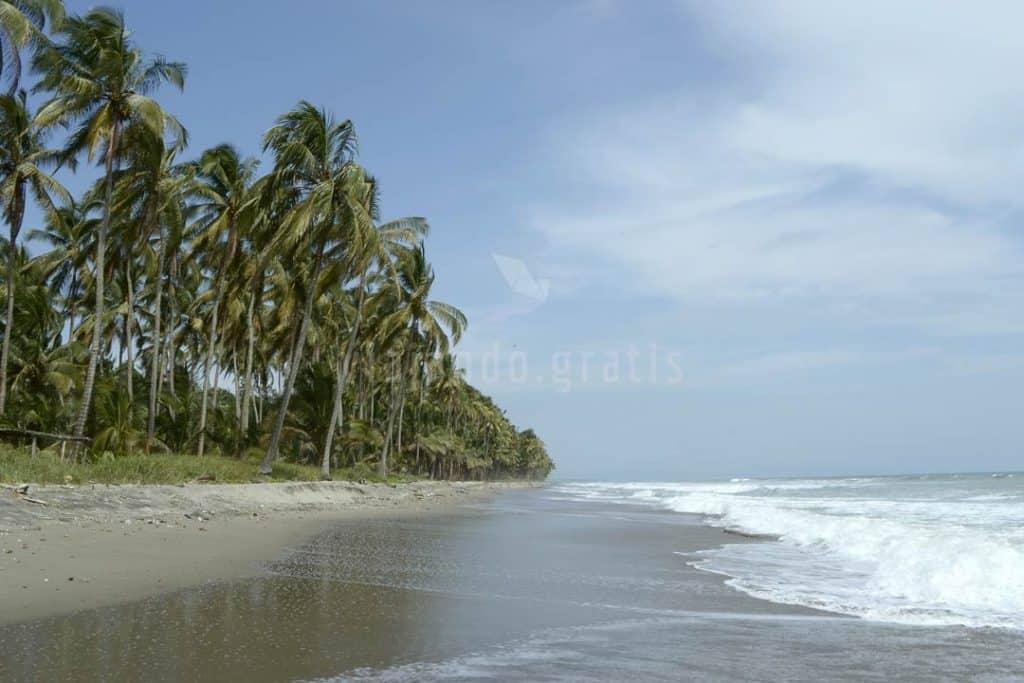 Playa de Juananú en Cojimíes